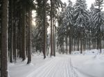 winter_2012_013
