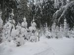 winter_2012_008