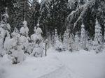 winter_2012_011
