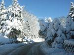 winter_2012_022